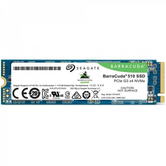 SSD 256GB Seagate Baracuda 510 (ZP256CM30041)